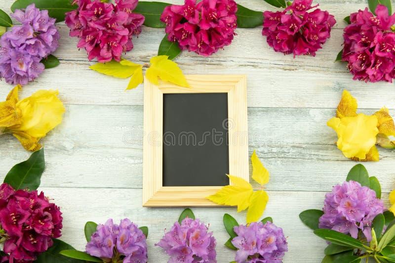 Topview od ramy od różanecznika, Azalee i irysa kwiatów, fotografia royalty free