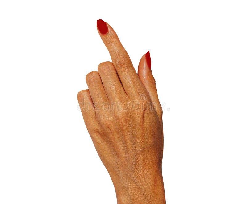 Toque fêmea da mão, apontando a algo imagem de stock royalty free