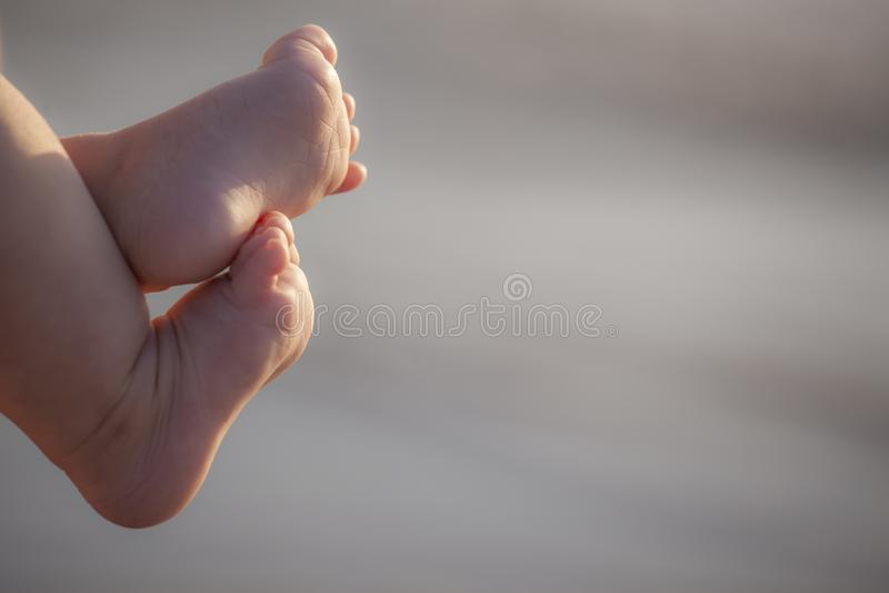 Toque recém-nascido dos pés do bebê fotografia de stock