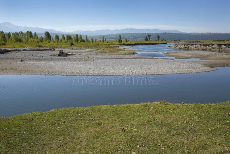 Torções no rio da forquilha do búfalo perto de Moran, Wyoming foto de stock royalty free