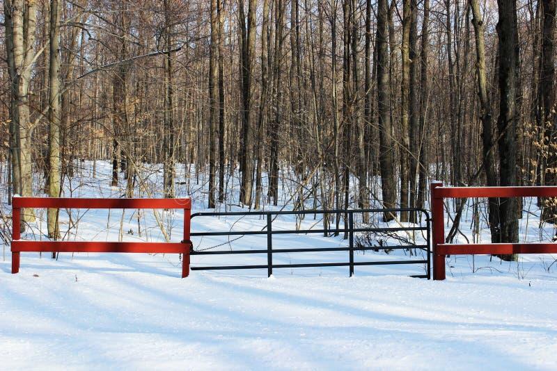 Tor-hereinkommendes Holz im Winter stockbild