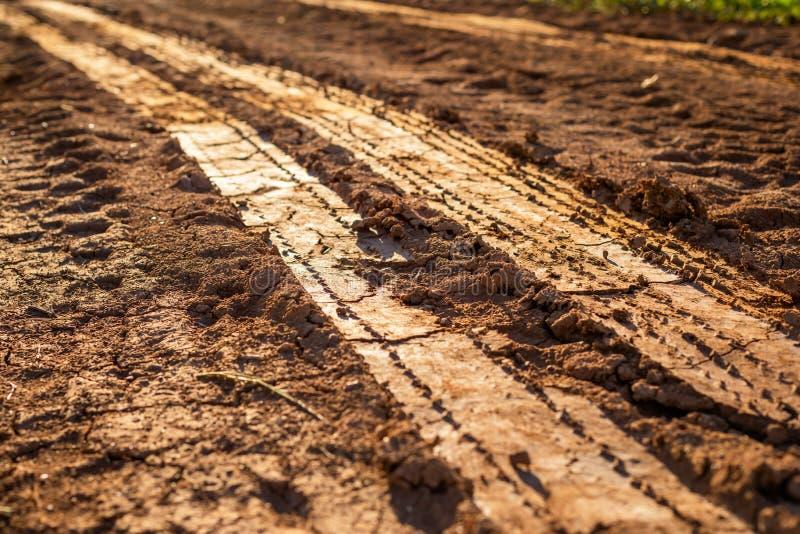 Tor kołowy na mokrej ziemi lub błocie fotografia stock