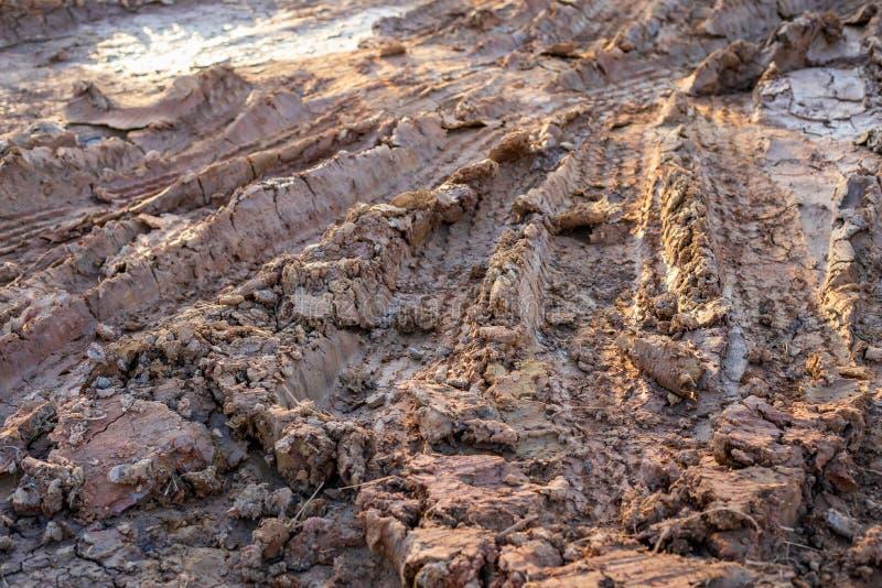 Tor kołowy na mokrej ziemi lub błocie zdjęcia royalty free