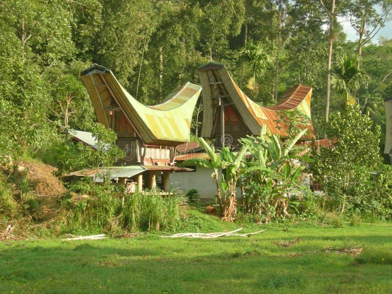 toraja σπιτιών παραδοσιακό στοκ φωτογραφίες με δικαίωμα ελεύθερης χρήσης
