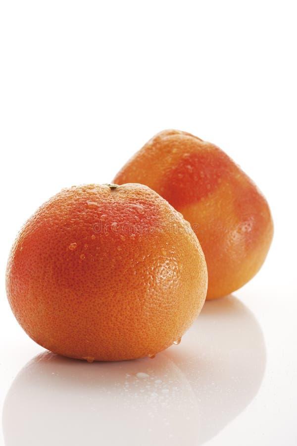 Toranjas (citrino paradisi) imagem de stock royalty free