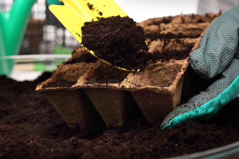 Torba del vaso, i raccolti naturali immagine stock libera da diritti