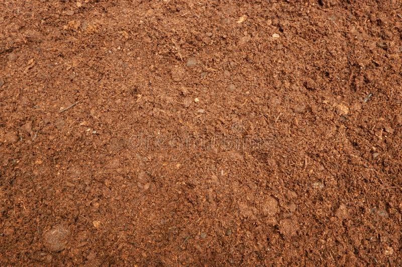 Torba Moss Soil Background immagine stock