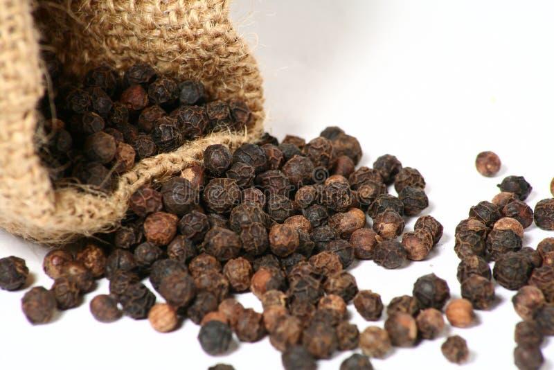 torba pepper zdjęcie royalty free