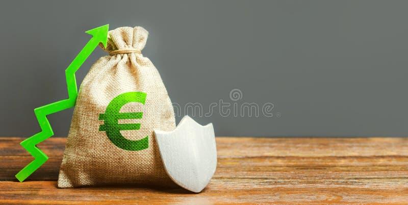 Torba z Euro znakiem, zielenią w górę strzały i metal osłoną, STREFA EURO pojęcie przyrost i ochrona inwestycje, gwarancja zdjęcie stock