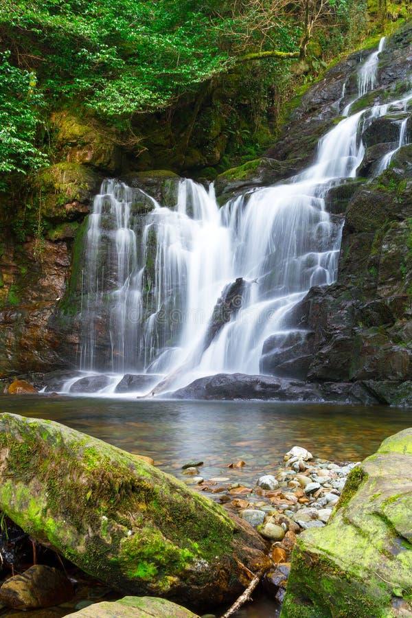 Torc瀑布在基拉尼国家公园 免版税图库摄影