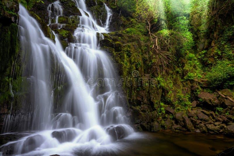 Torc siklawa, Killarney parka narodowego okr?g administracyjny Kerry, Irlandia obraz royalty free