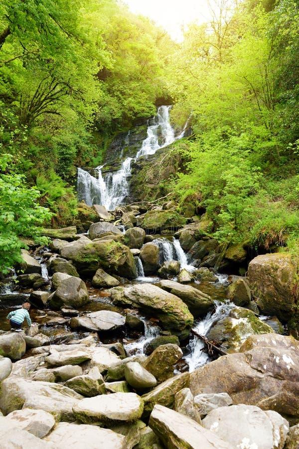 Torc vattenfall, en av mest v?lk?nda turist- dragningar i Irland som lokaliseras i scenisk skogsmark av den Killarney nationalpar arkivbilder