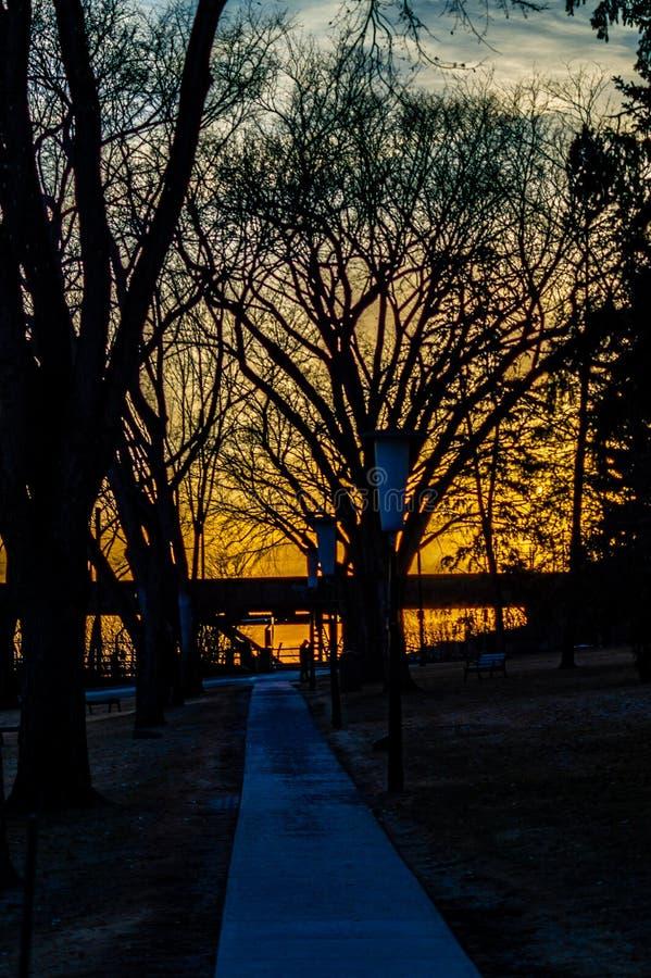 Torche brûlant comme ensembles du soleil sur le chemin leurs arbres photos libres de droits