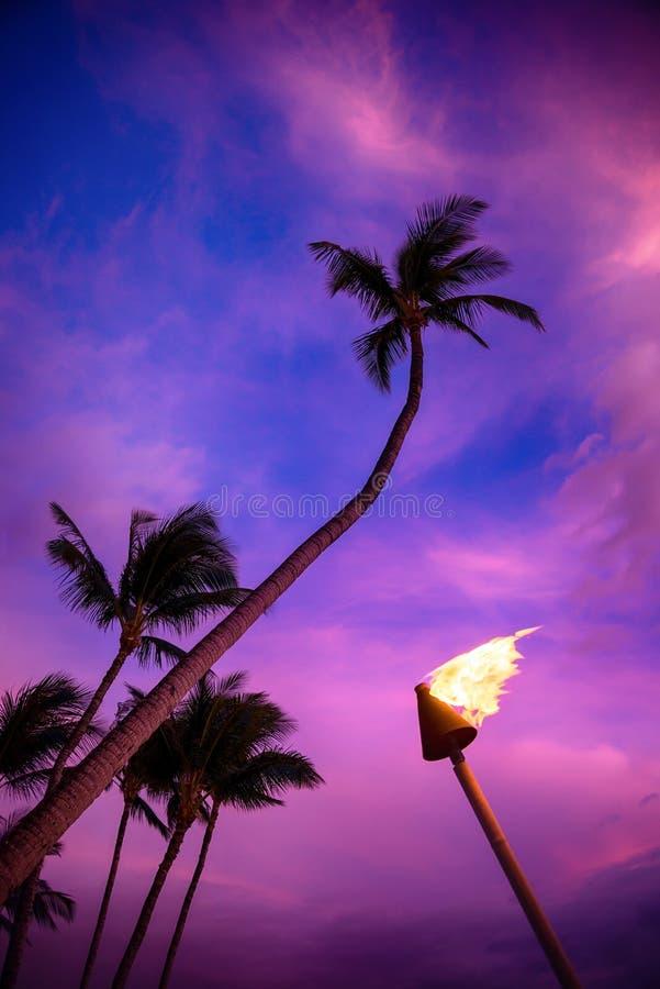 Torche de Tiki contre le coucher du soleil tropical photographie stock libre de droits