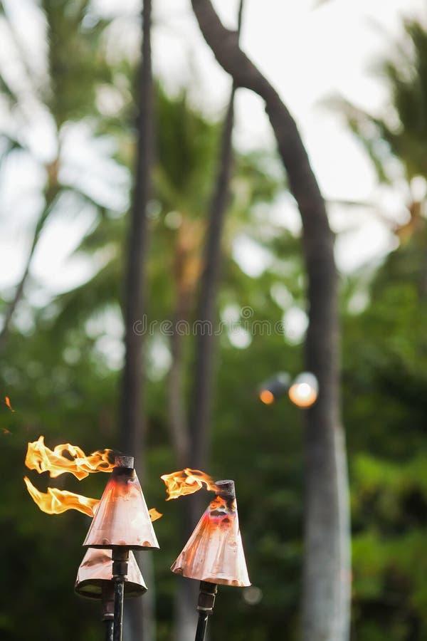 Torches hawaïennes de tiki photographie stock libre de droits