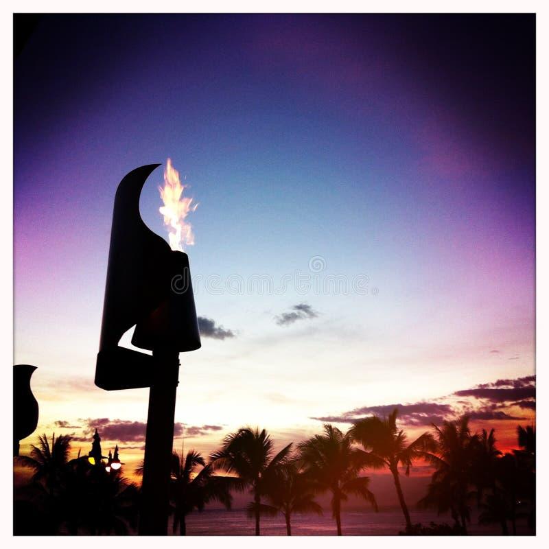 Torcia di tiki delle Hawai fotografia stock