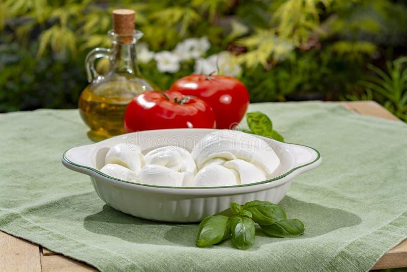 Tordu pour former un fromage ? p?te molle italien de mozzarella de treccia de tresse a servi avec le basilic et les tomates frais image libre de droits