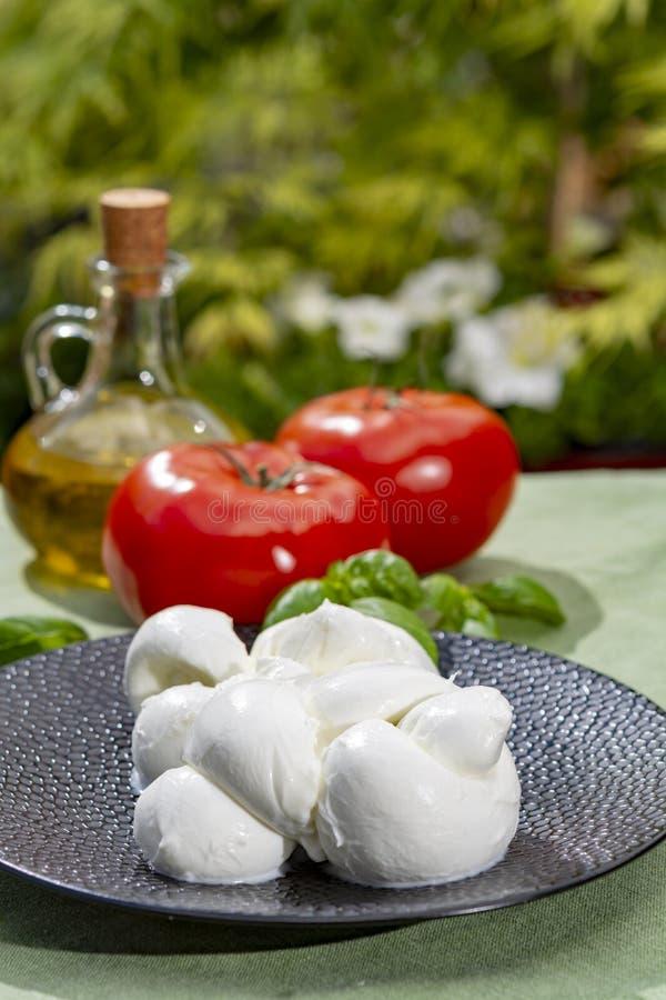 Tordu pour former un fromage ? p?te molle italien de mozzarella de treccia de tresse a servi avec le basilic et les tomates frais image stock