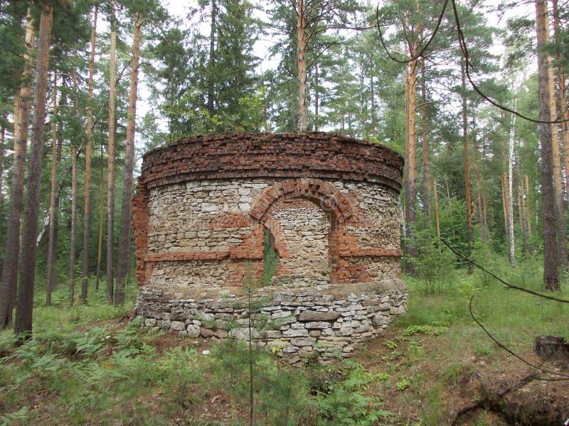 Toren in het hout royalty-vrije stock foto