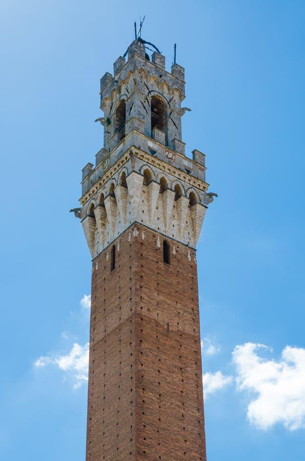 Toren van Palazzo Pubblico op Piazza del Campo in historisch stadscentrum van Siena, Italië, Europa stock fotografie