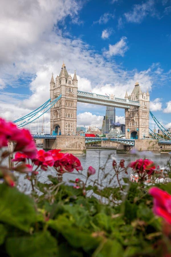 Torenbrug met bloemen in Londen, Engeland, het UK stock afbeelding