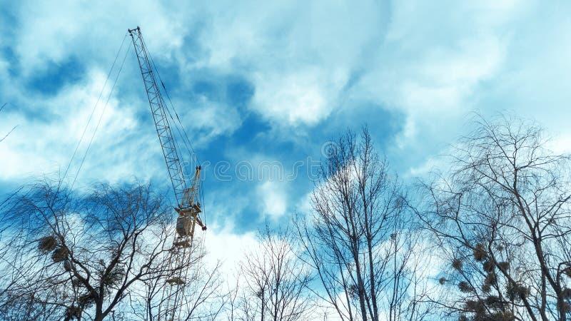 Torenkraan door blauwe bewolkte hemel en tak van bomen stock afbeelding