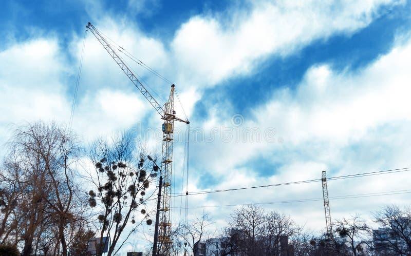 Torenkraan door blauwe bewolkte hemel en tak van bomen stock fotografie