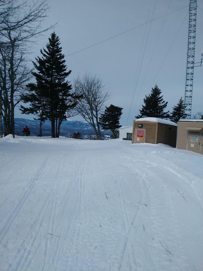 Torens bij het sneeuwgebied royalty-vrije stock afbeelding