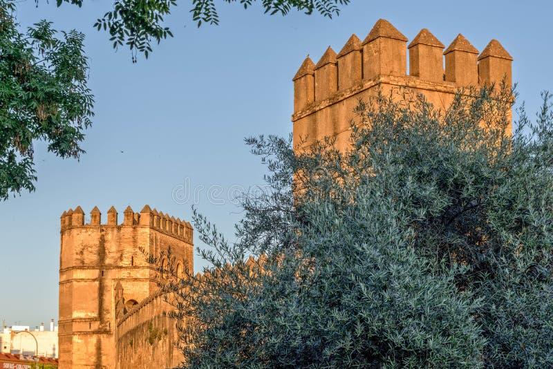 Torens en Torentjes royalty-vrije stock afbeelding