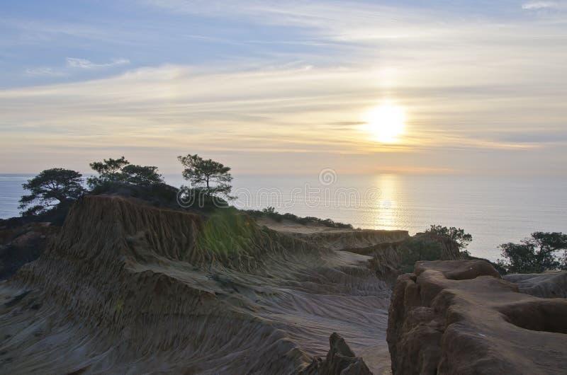 Torey Pines Coast fotografering för bildbyråer