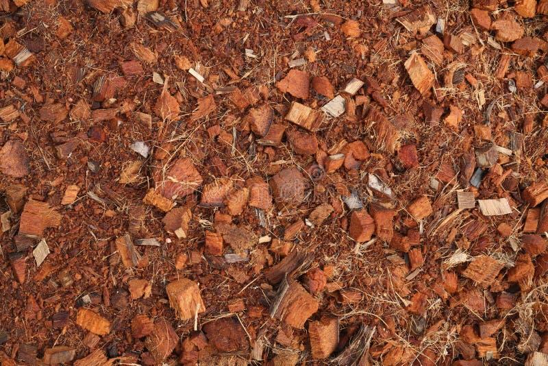 Torfboden mit Kokosnuss spathe Faser lizenzfreie stockbilder