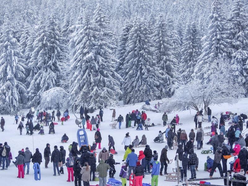 Torfhaus, Alemanha - 3 JANUAR 2015: Povos não identificados com crianças Esportes de inverno e atividade do entretenimento Spor d fotos de stock royalty free