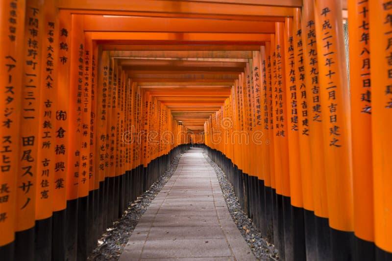 Tori Gate roja en la capilla de Fushimi Inari en Kyoto, Japón foto de archivo libre de regalías