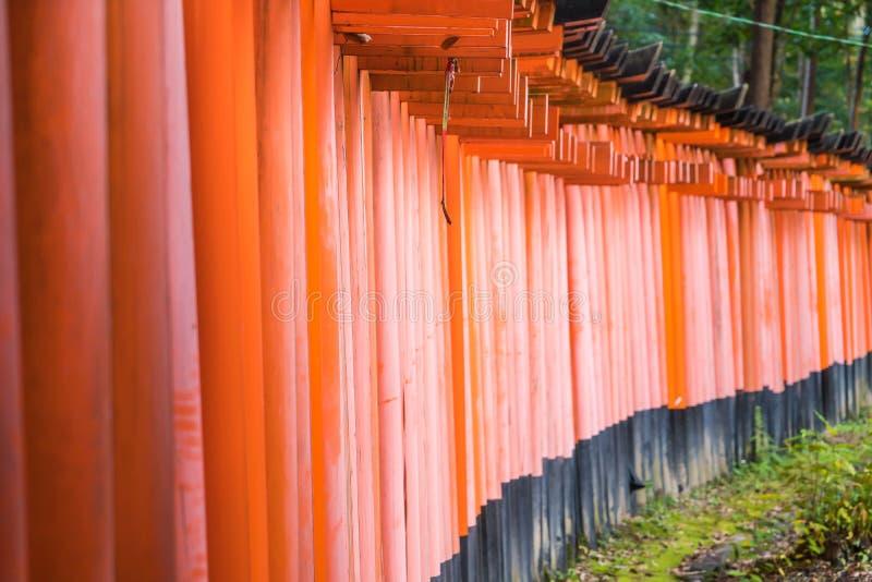 Tori Gate roja en la capilla de Fushimi Inari en Kyoto, Japón imagenes de archivo