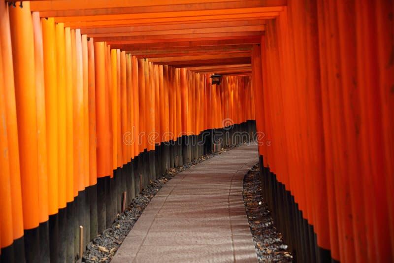 Tori Gate roja en la capilla de Fushimi Inari en Kyoto, Japón fotos de archivo