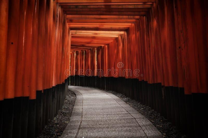Tori Gate roja en la capilla de Fushimi Inari en Kyoto, Japón imágenes de archivo libres de regalías
