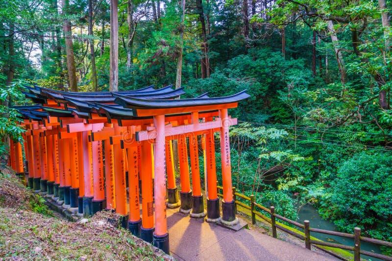 Tori Gate rossa al tempio del santuario di Fushimi Inari a Kyoto, Giappone immagini stock libere da diritti