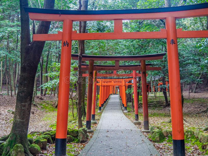 Tori Gates roja de la capilla de Kashihara imagen de archivo