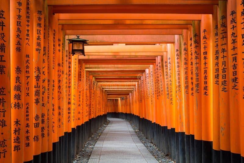 Torii ścieżka w Fushimi Inari Taisha Shrine w Kioto, Japonia obraz stock