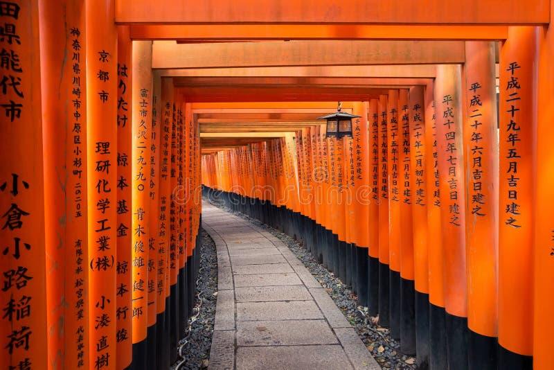 Torii ścieżka w Fushimi Inari Taisha Shrine w Kioto, Japonia zdjęcie royalty free