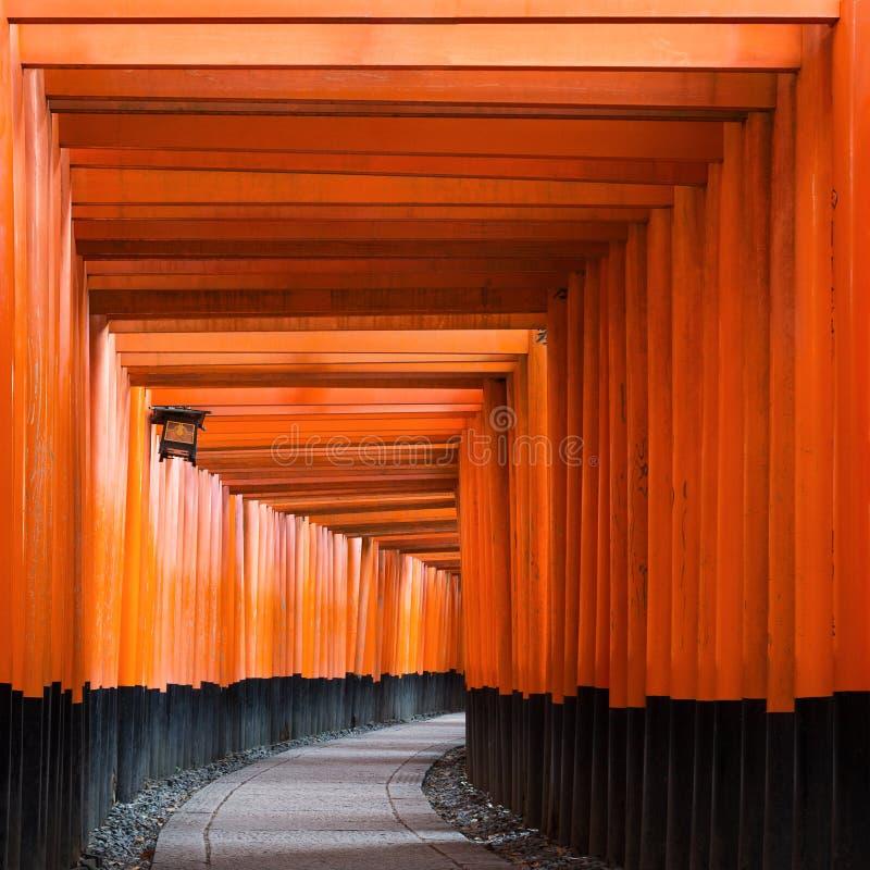 Torii ścieżka w Fushimi Inari Taisha Shrine w Kioto, Japonia zdjęcie stock