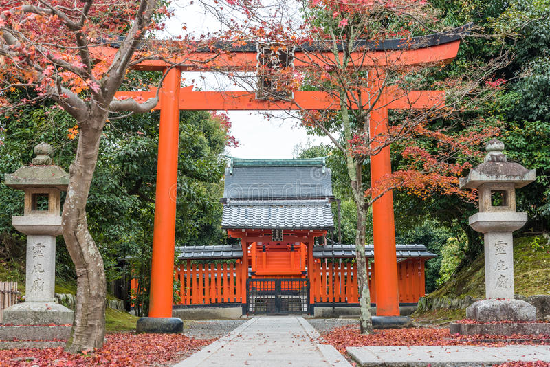 Torii brama przy Tenryuji świątynią w jesień sezonie zdjęcia stock