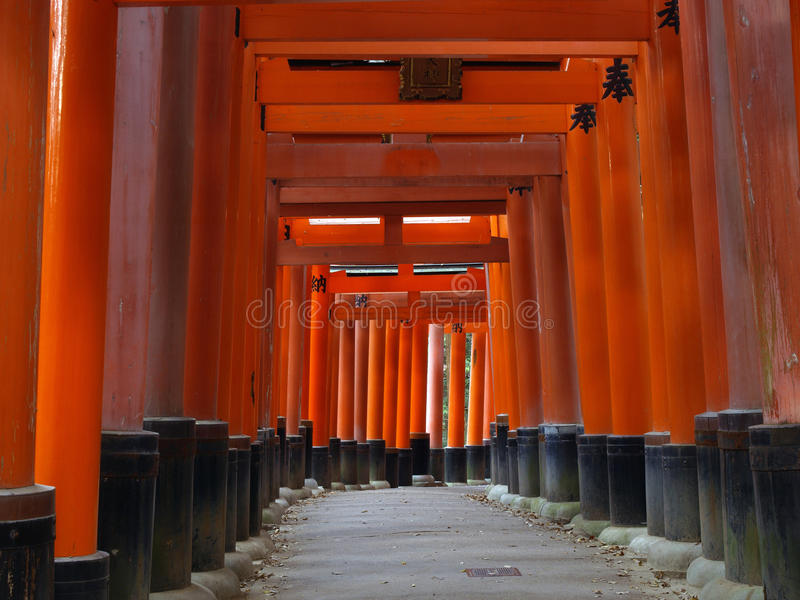 Download The Torii of Fushimi Inari stock image. Image of famous - 24668077