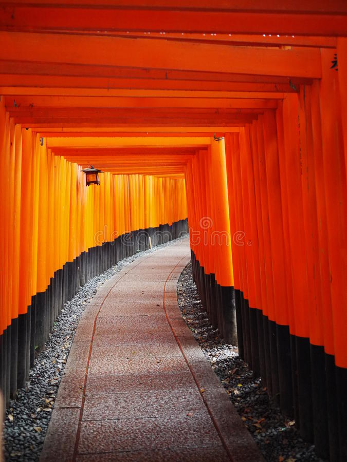 Torii In Kyoto Stock Photo