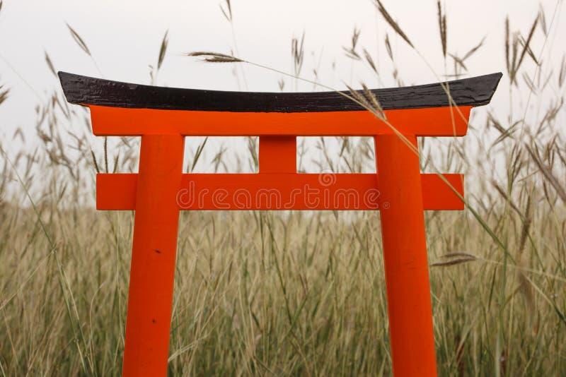 Torii orange de Japonais se tiennent sur les gras de pré image stock