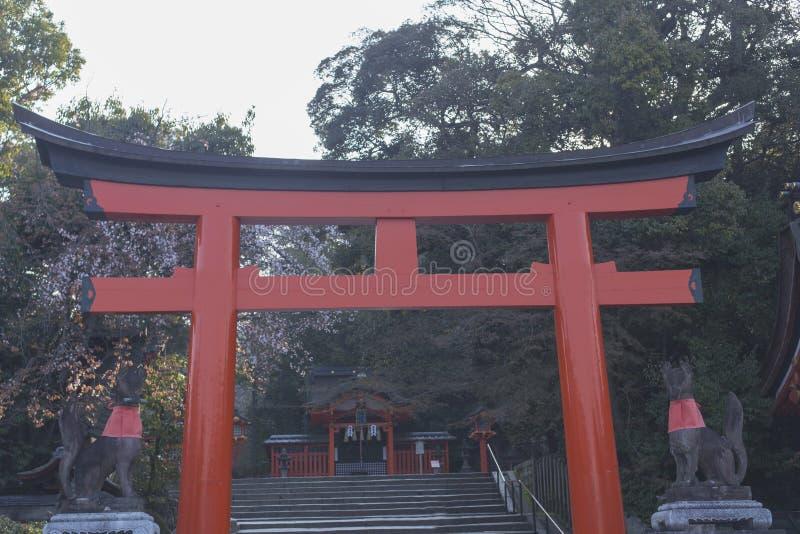 Torii på ingången av Fushimi Inari-Taisha i Kyoto under Hanamien arkivbild