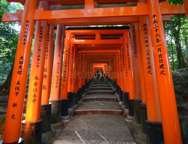 Torii porta il santuario del Fushimi Inari a Kyoto, Giappone fotografia stock libera da diritti