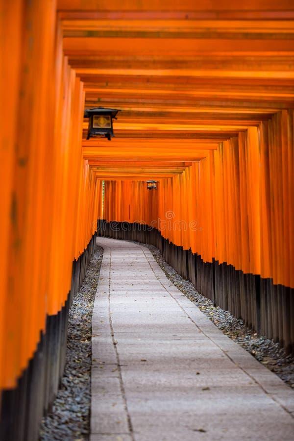Torii rosso al Giappone fotografia stock libera da diritti