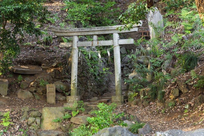 Torii, santuário de Shinto, portão de pedra dedicado à divindade da raposa Jiro-inari na floresta fotografia de stock royalty free