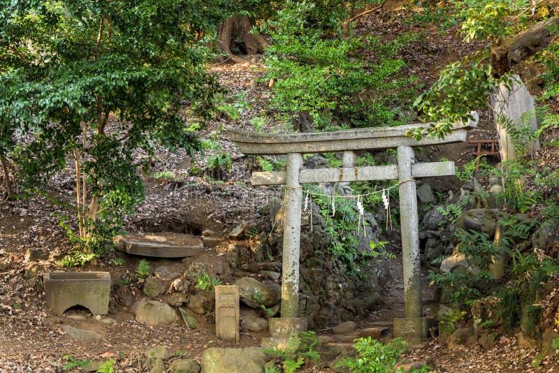 Torii, santuário de Shinto, portão de pedra dedicado à divindade da raposa Jiro-inari na floresta fotografia de stock
